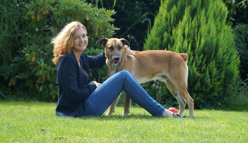 Стюардесса приютила бездомного пса