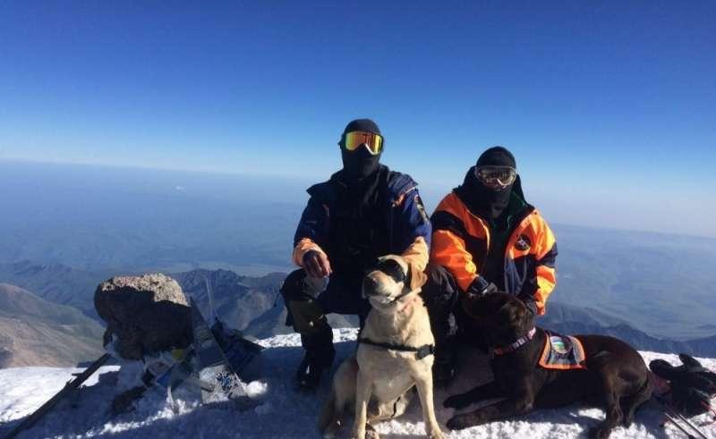 Лабрадоры МЧС России впервые покорили Эверест