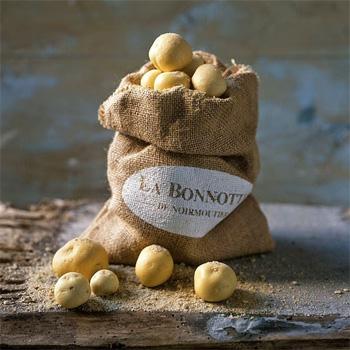 ТОП-10 самых дорогих продуктов в мире - Картофель