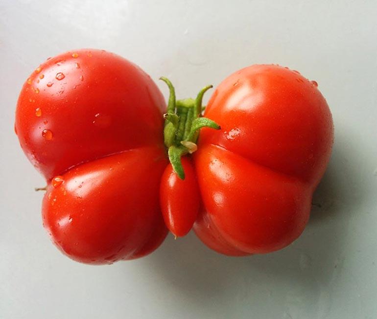Смешные картинки с помидорами, мая объемная своими