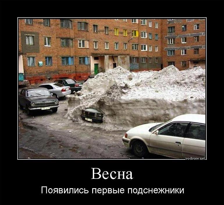 Демотиваторы про весну (24 фото)