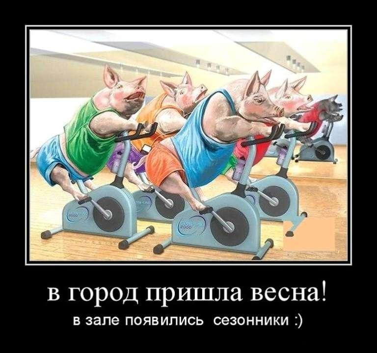 Демотиватор фитнес тренер